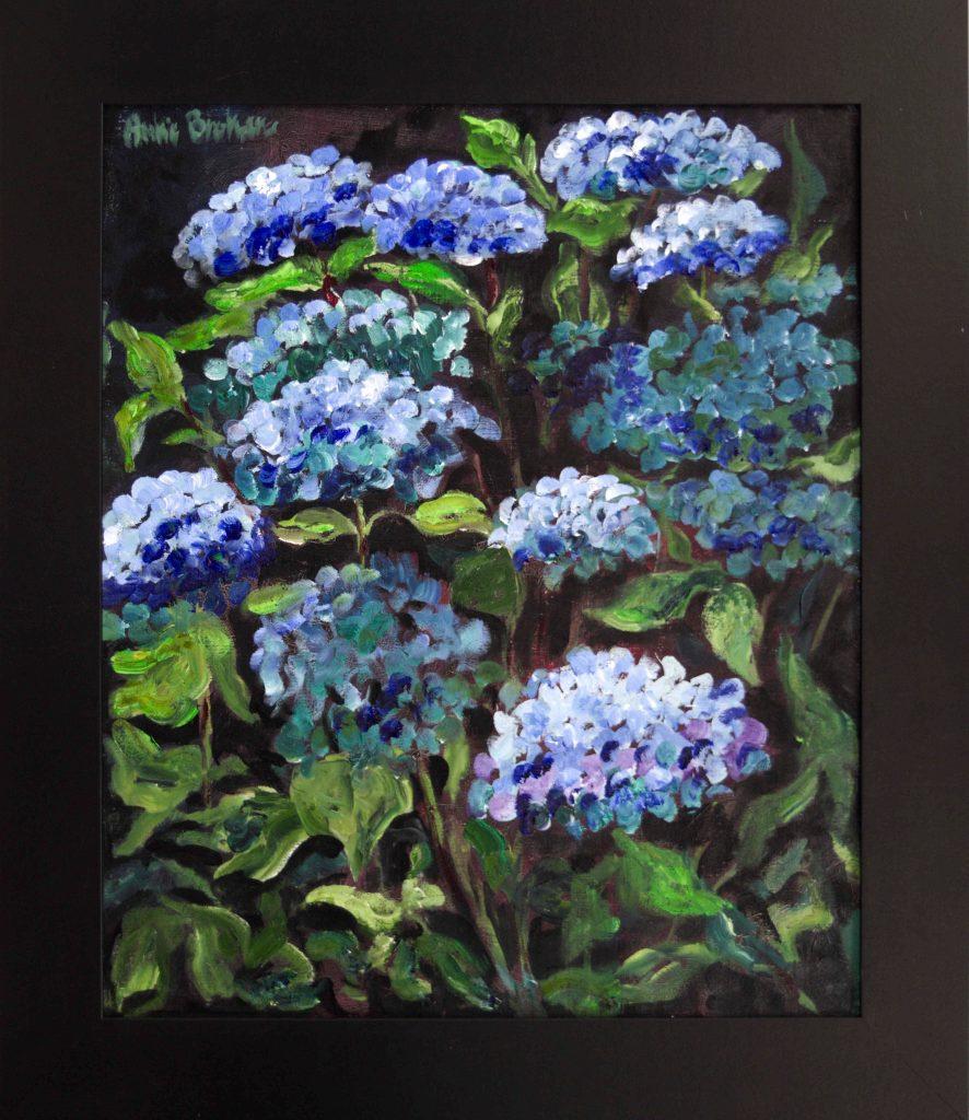 Anke Brokstra. Blauwe hortensia's op lichte achtergrond/Blue hydrangea with darkbackground 50-x-60-2016.